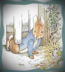 Peter Rabbit escaping,  Attribution: https://www.google.com/search?rlz=1C1CHFX_enUS375US375&sourceid=chrome&ie=UTF-8&q=images+of+peter+rabbit