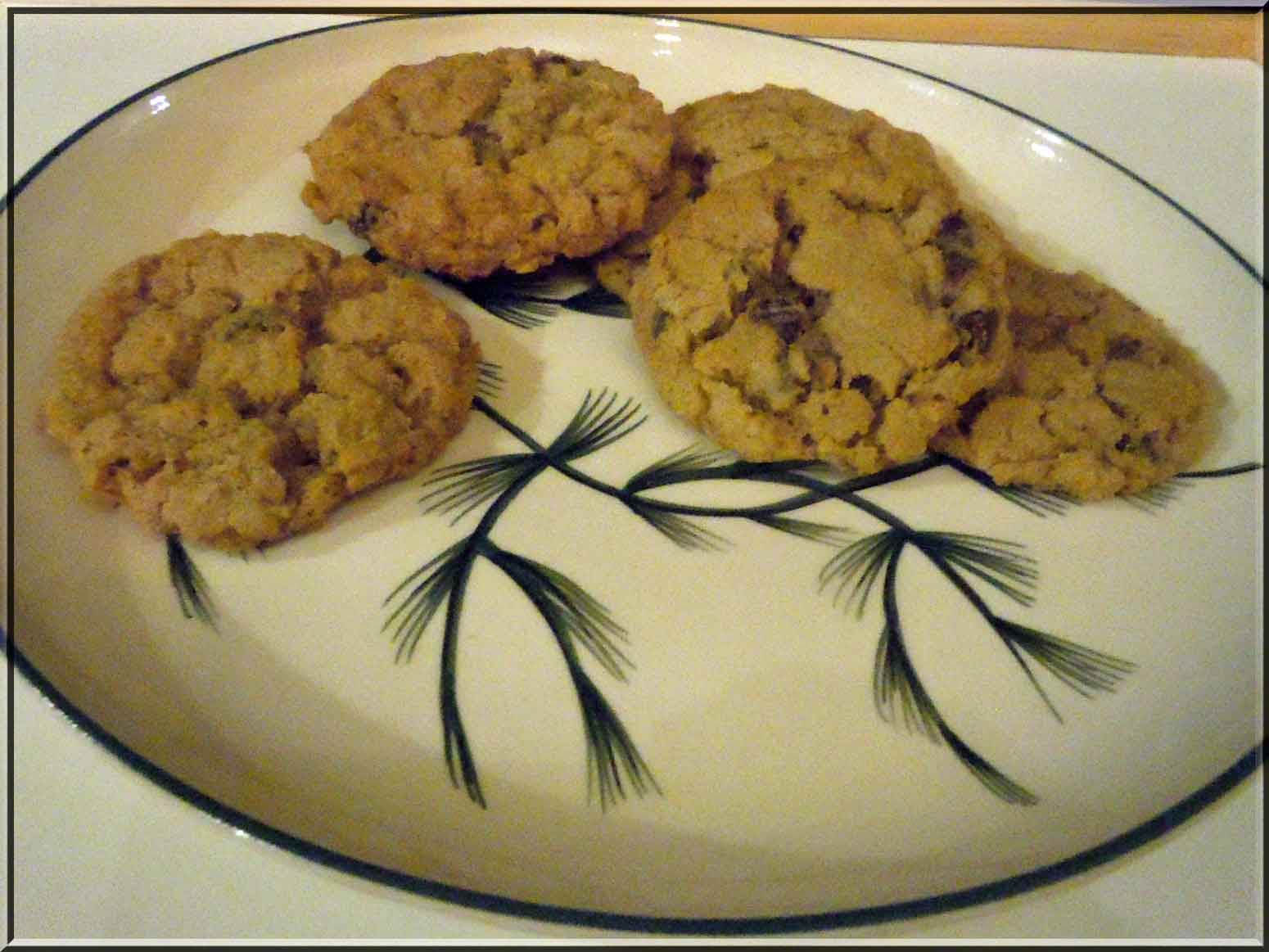 Oatmeal Cinnamon Chocolate Chip Cookies