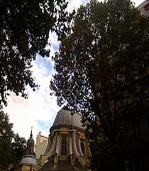 Saint Germaine