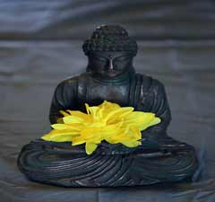 Aromatherapy, Attribution: http://www.flickr.com/photos/pinksherbet/4548016109/sizes/m/