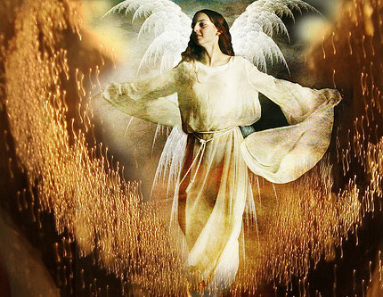 Angel, http://www.flickr.com/photos/alicepopkorn/5521029002/sizes/m/in/photostream/