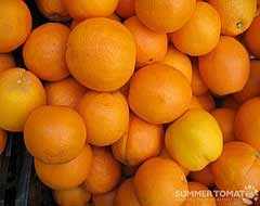 Navel Orange, Attribution: http://www.flickr.com/photos/summertomato/4508709819/