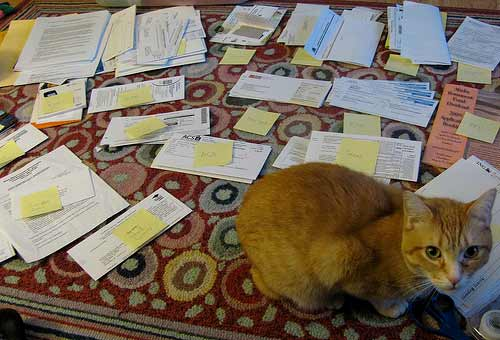 Pile of Paperwork, Attribution: http://www.flickr.com/photos/perspicacious/3207784151/sizes/m/in/photostream/